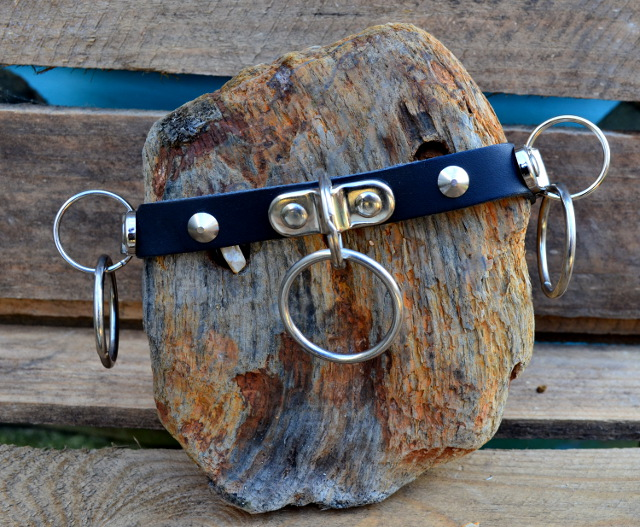1 Row Conical Stud + Hoops Leather Dog Collar